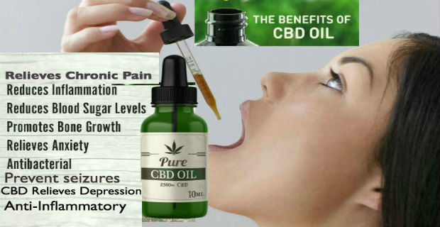 The Definitive Guide to The Best Cbd Oil For Pain In 2020 – Venturebeat